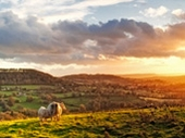 2010 'Gloucestershire at its Best' Photography Competition