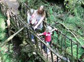 2 for 1 entry at Puzzlewood in the Forest of Dean