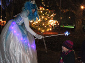 The Magic of Westonbirt this Christmas