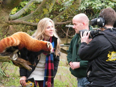 Live 'n' Deadly live from Cotswold Wildlife Park