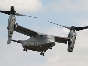 Rare Osprey to swoop at the Air Tattoo this summer 2012