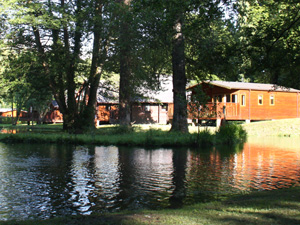 ACCOMMODATION REVIEW: A stay in a log cabin at Whitemead Forest Park