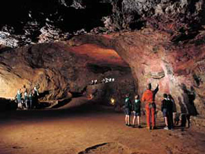 New EXCLUSIVE Offer! £2 off family ticket to Clearwell Caves: