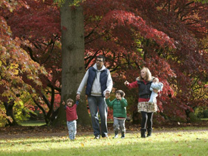 Events at Westonbirt Arboretum