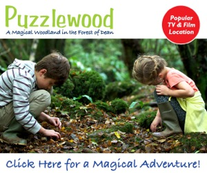 Puzzlewood in the Forest of Dean Gloucestershire