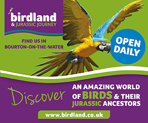 Birdland Park & Gardens in the Cotswolds