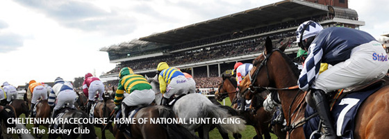 Cheltenham Whats On, Events and Places - Click to view