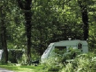 Woodlands View Caravan & Campsite