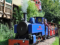 Birthday Parties at Perrygrove Railway