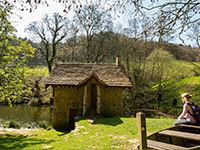 Woodchester Park